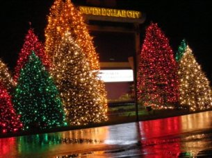 SDC Christmas Entrance Lights