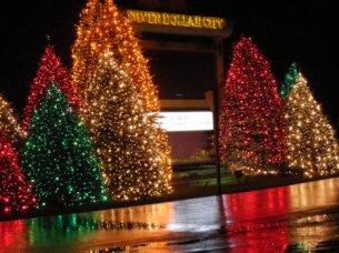 SDC Christmas Entrance Lights