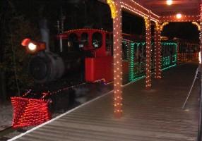 SDC train