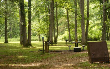 Picnic area at Pruitt info center